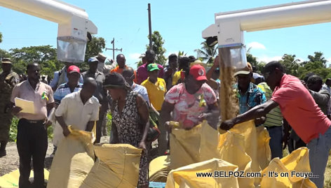 Bagging rice has never been easier in Artibonite Haiti thanks to President Jovenel Moise
