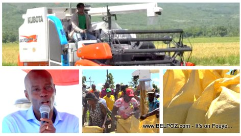 Haiti Agriculture - President Jovenel Moise introduces combine harvesters to Artibonite rice production (VIDEO)